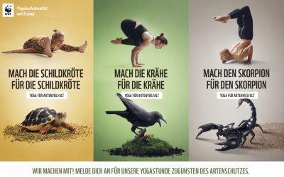 WWF – Yoga für Artenvielfalt